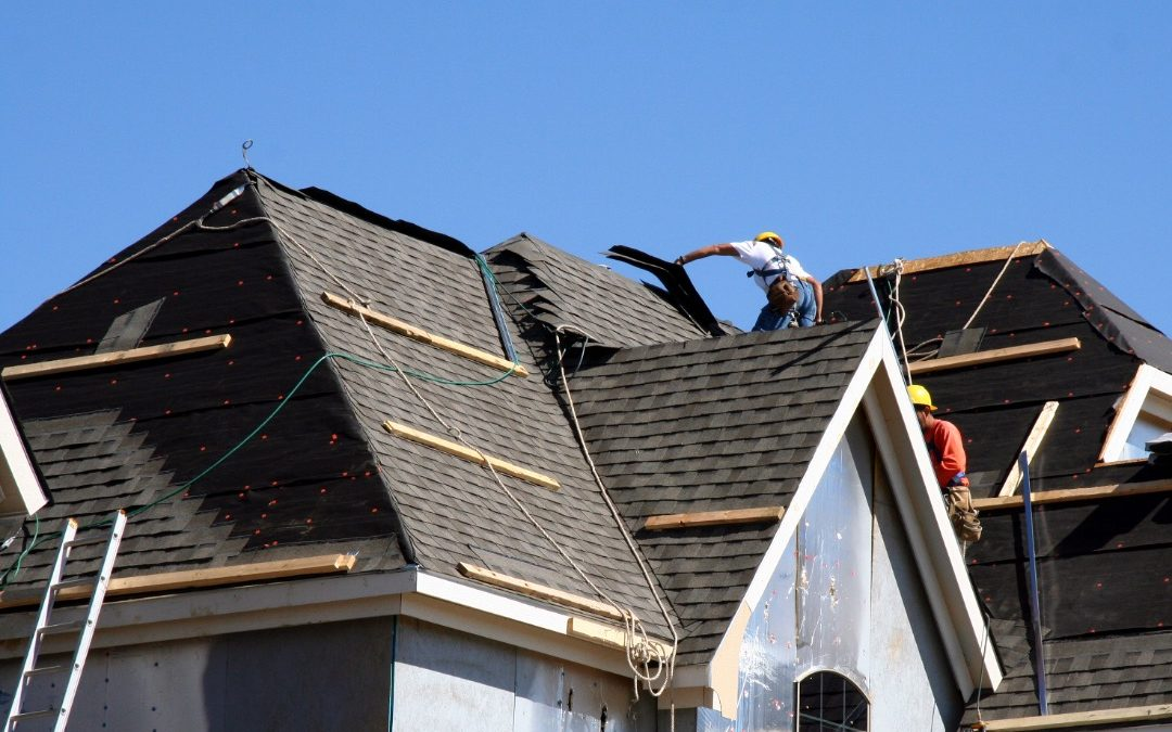 Questions to Ask Before Choosing a Roof: Insights from a Roofing Company in Homer Glen, Illinois